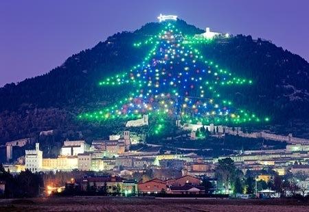 Alles voor je kerstboom