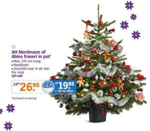 Albert Heijn Nordmann kerstboom 2015
