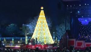 Kerstboom Witte Huis 2015