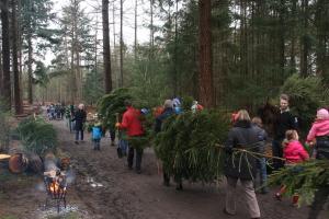 Kerstboom zagen Dit jaar geen kerstboom zagen op de Utrechtse Heuvelrug