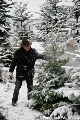 Kerstboom zagen Winterberg