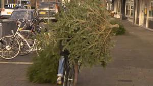 kerstboom geld waard