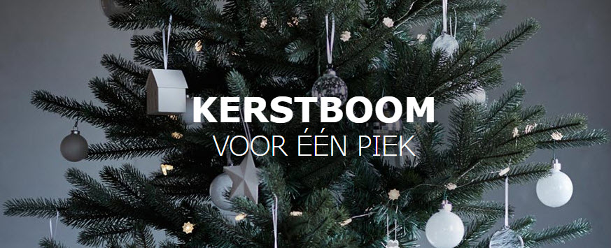 Nordmann Kerstboom Voor Een Euro Bij Ikea Kerstboomprijzen Nl