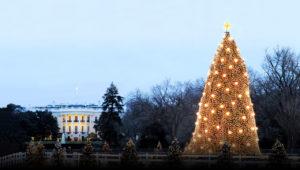 kerstboom wittte huis